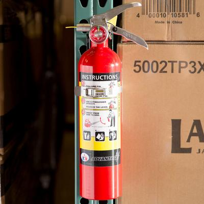 Badger Advantage ADV-250 2.5 lb. Dry Chemical ABC Fire Ex...