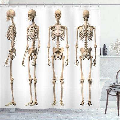 """Ambesonne Human Anatomy Man Male Human Skeleton Skull Different Perspectives Medical Humor Illustration Shower Curtain sc_25477 Size: 69"""" W x 70"""" H"""