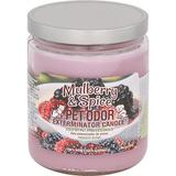 Pet Odor Exterminator Mulberry & Spice Deodorizing Candle, 13-oz jar