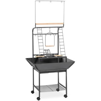 """Prevue Pet Products Small Parrot Playstand, 17.6"""" L X 16.5"""" W X 59"""" H, Black"""
